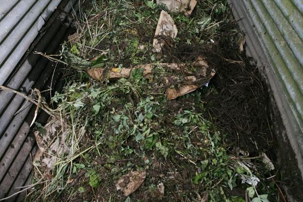 compost-heap-4