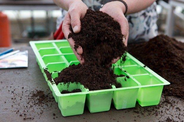 adding-compost-to-a-tray-3