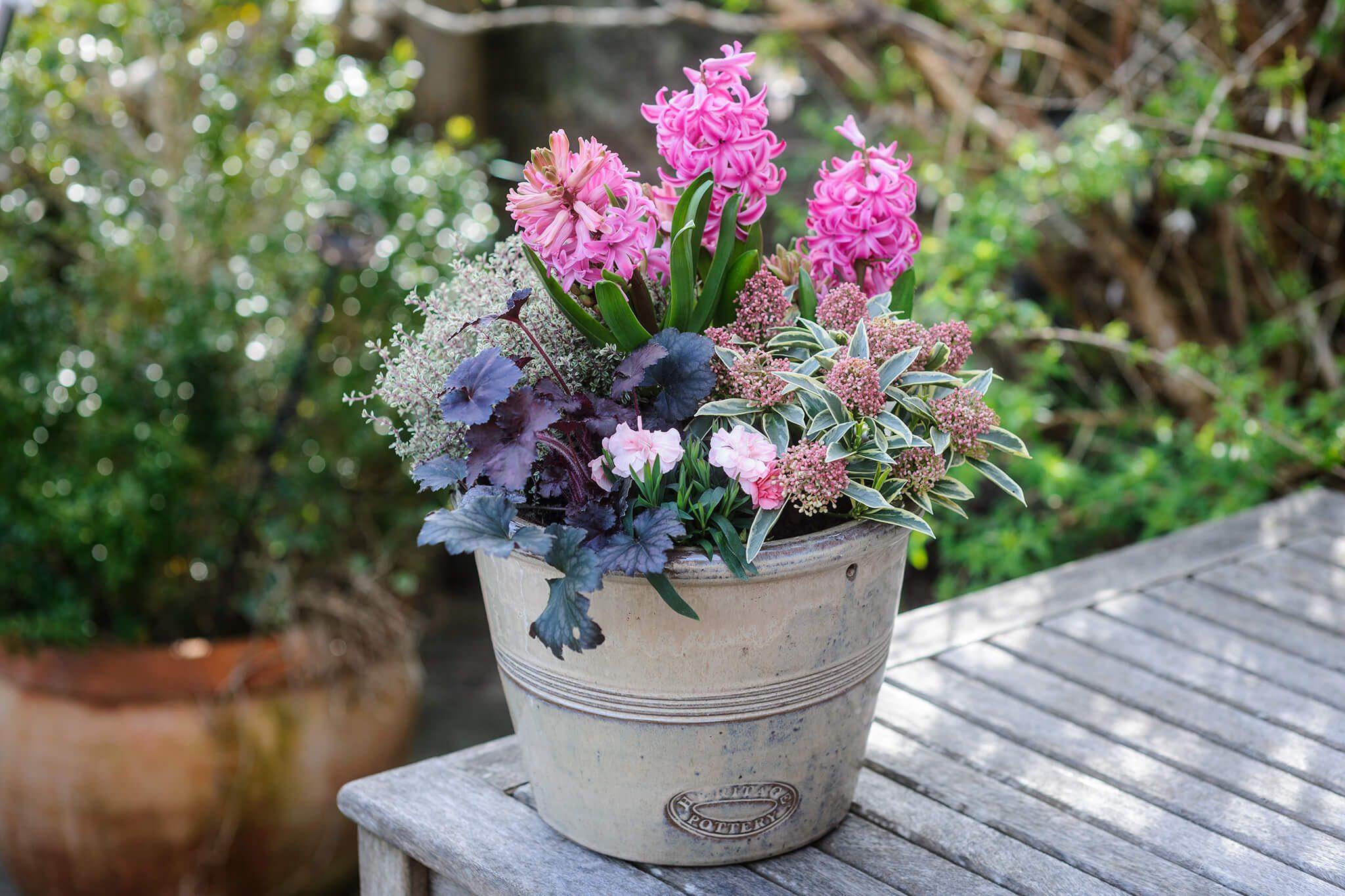 hyacinth-and-heuchera-pot-2 & 10 Spring Container Ideas - BBC Gardeners\u0027 World Magazine