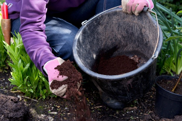 Adding compost to the soil