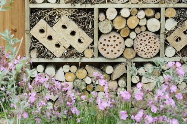 A decorative wildlife-haven wall made of old pallets, bricks and offcuts of branches and twigs