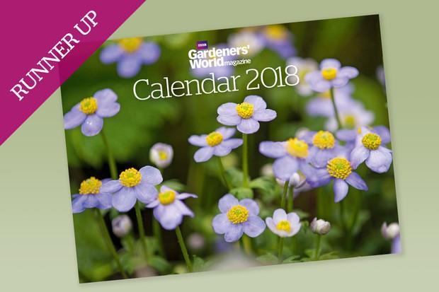calendar-2018-runner-up-anemone-obtusiloba-2