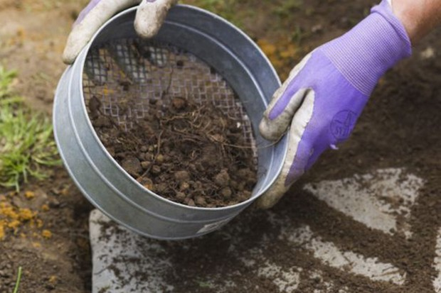 How to lay stepping stones - sieving soil into the gaps