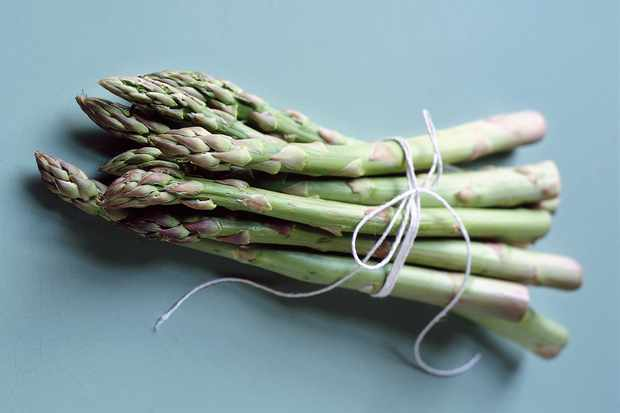 Asparagus spears tied with string