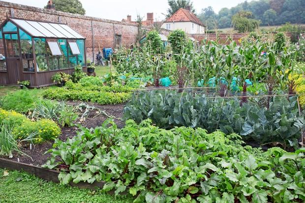 A splendid walled vegetable garden