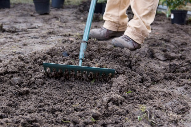raking-the-soil-and-reducing-compaction