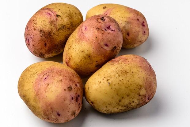 potato-carolus-6