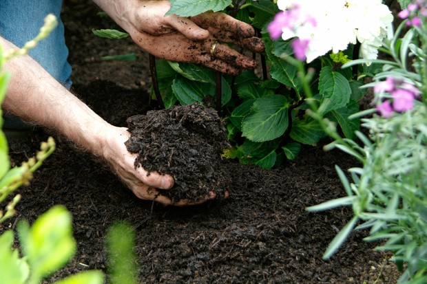 get-the-best-from-acid-soil-mulching-2