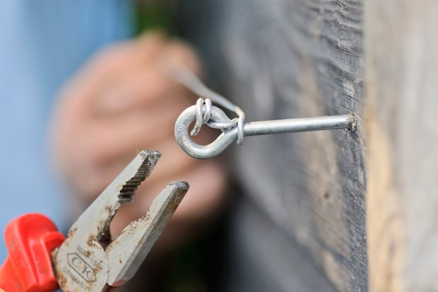 Turning a vine-eye with pliers to tighten a wire support for a climber