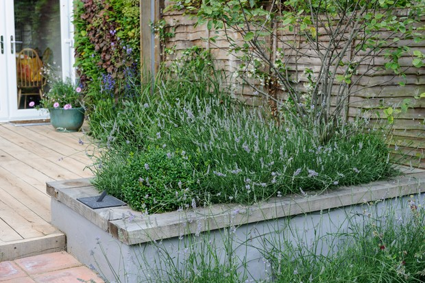 raised-bed-with-edge-for-seating-2
