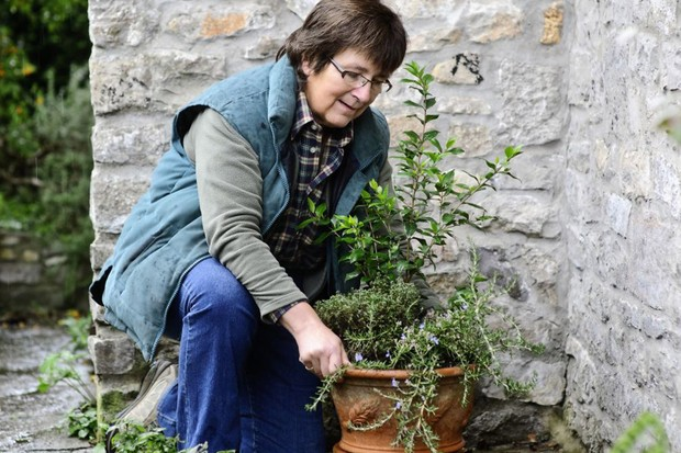 How to protect herbs over winter - moving the pot close to a wall