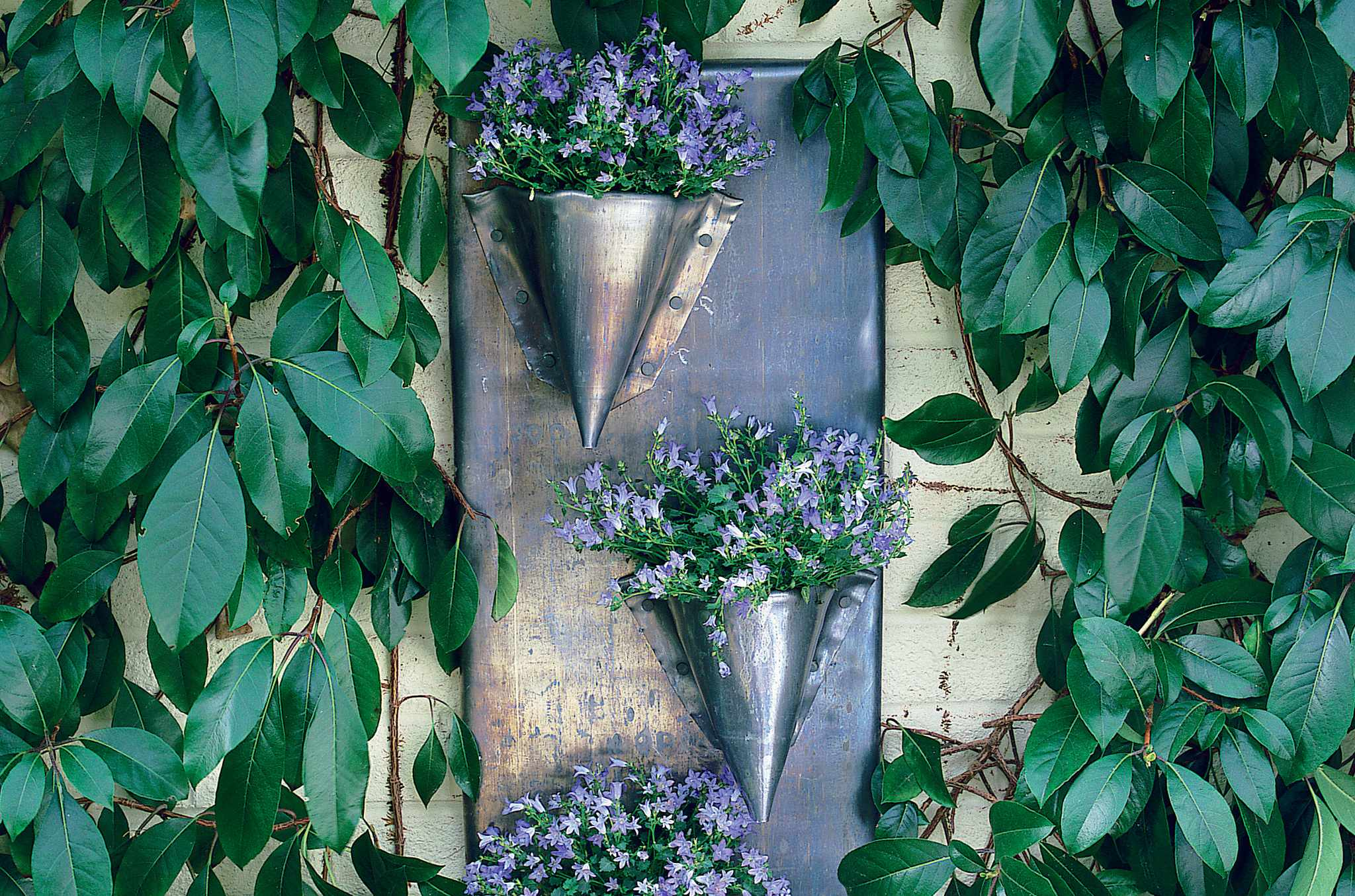 How to make a lead wall planter