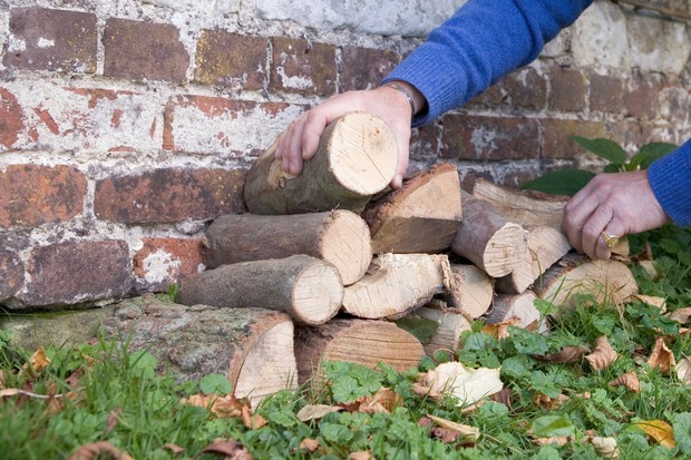 features-for-wildlife-log-pile-3