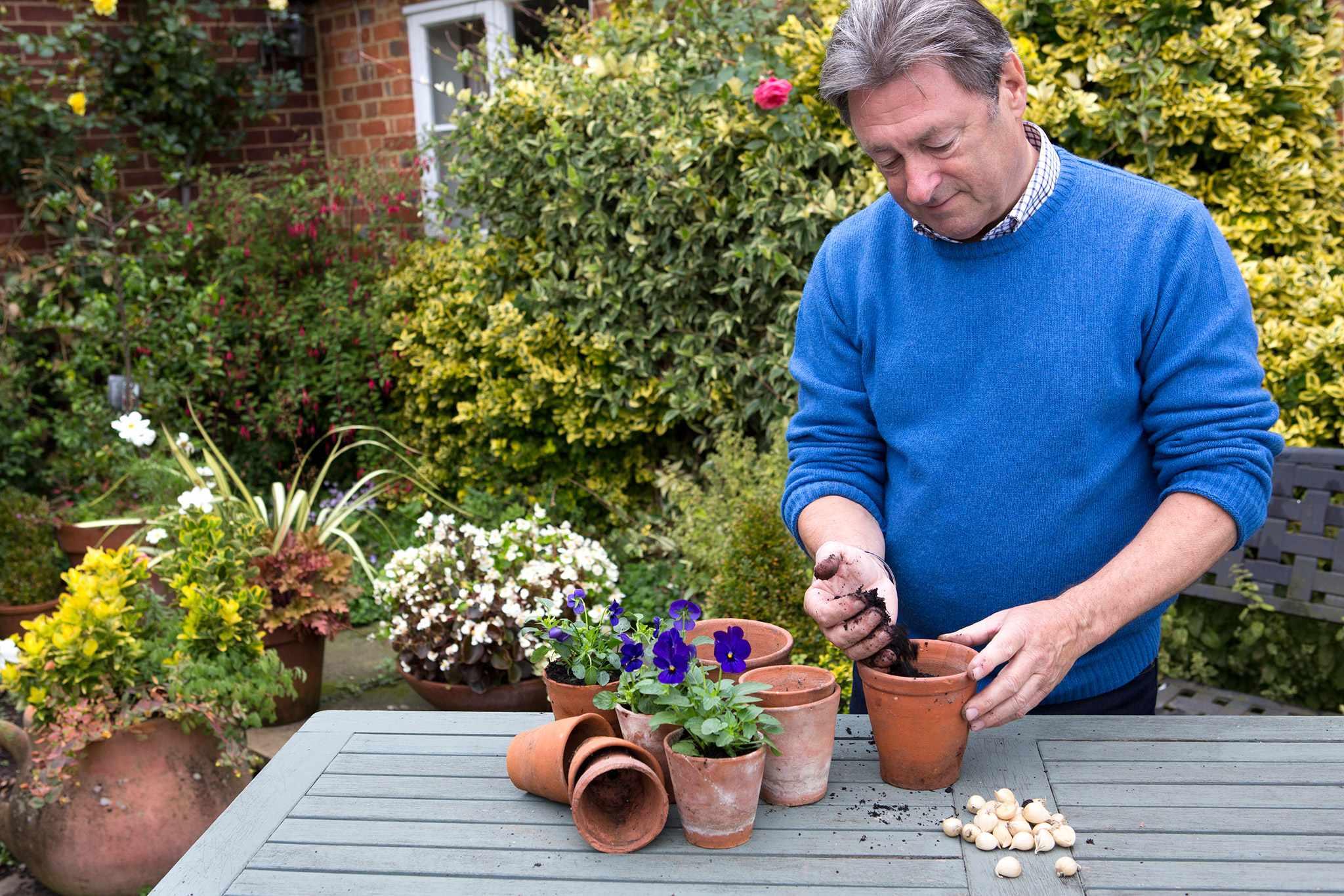 Alan Titchmarsh plants winter flowering iris bulbs