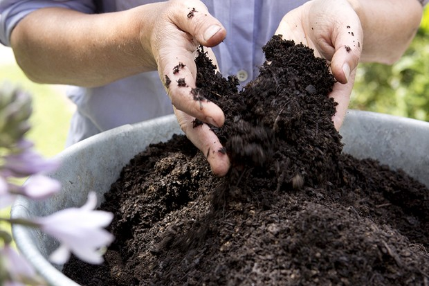 Can I reuse pot compost?