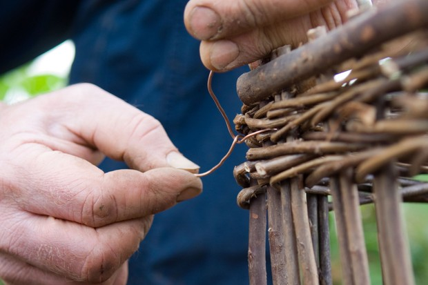 How to make a strawberry bed - securing the willow fencing together