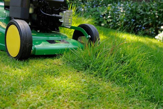 Mowing grass short