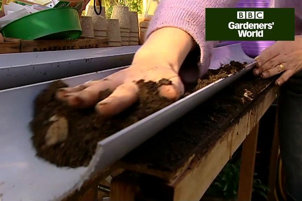 How to grow salad leaves in guttering