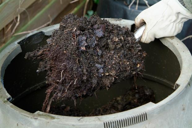 empty-compost-bin-3