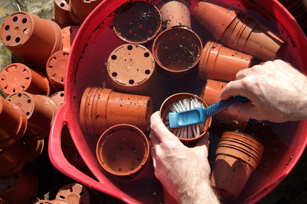 washing-plant-pots-2