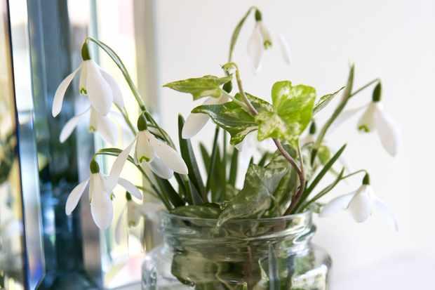 How to create a snowdrop vase