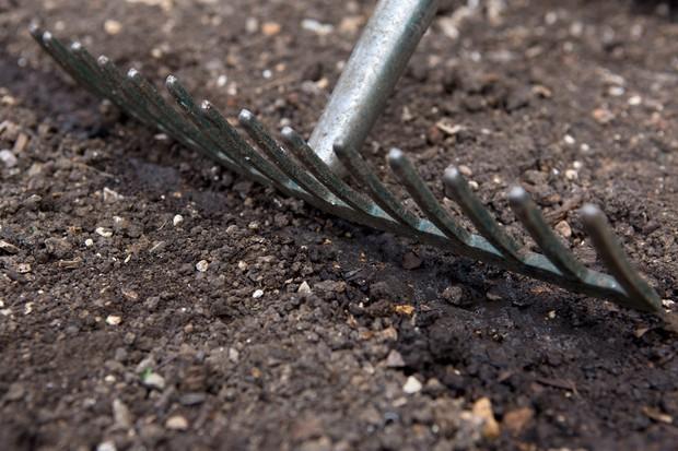 Raking the soil over the drill