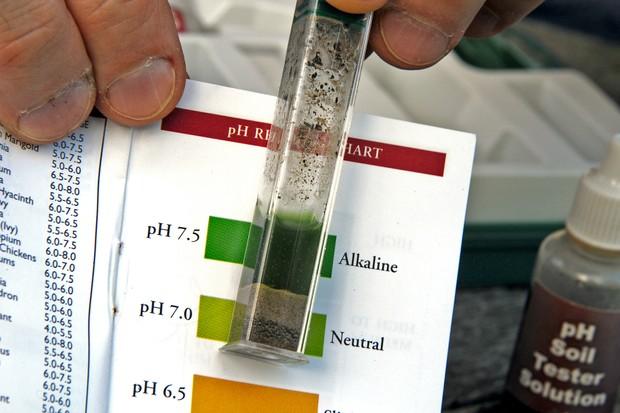 Soil pH test result