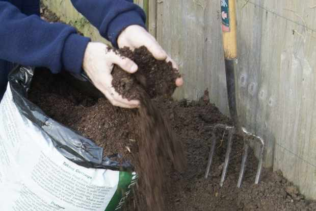 add-compost-to-the-base-of-the-hole-2