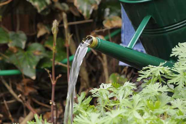 water-pouring-from-spout-of-watering-can-2
