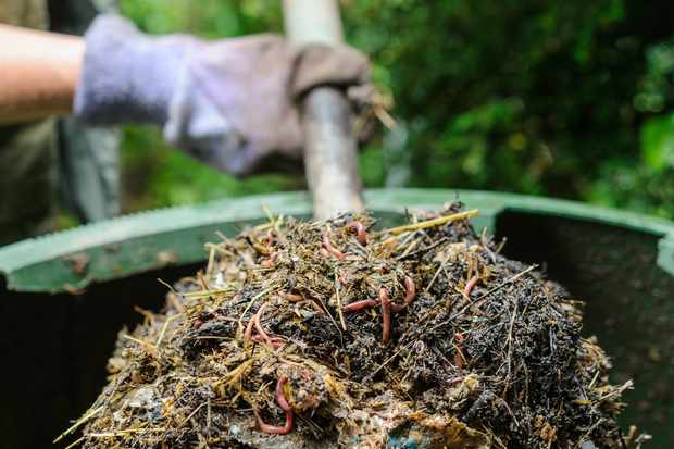 turning-the-compost-heap