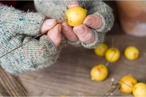 Christmas table decoration - piercing the crab apples