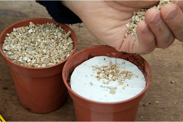 How to grow herbs from seed discs - covering the disc with vermiculite