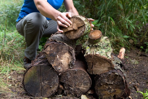 Placing logs into a stack