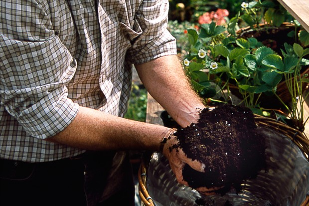 filling-the-basket-with-compost-2