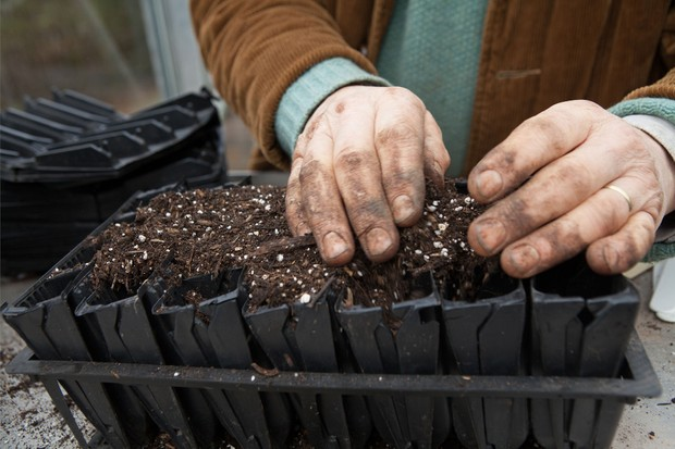 filling-rootrainers-with-compost-2