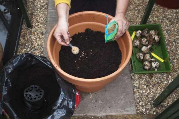 adding-slow-release-fertiliser