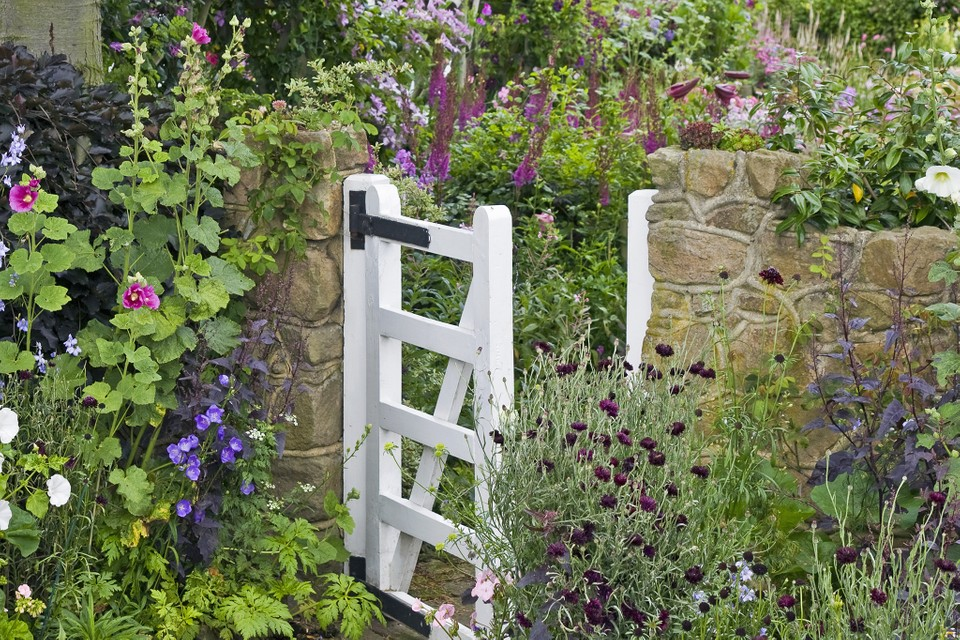 Nine Ideas For Front Gardens Bbc Gardeners World Magazine