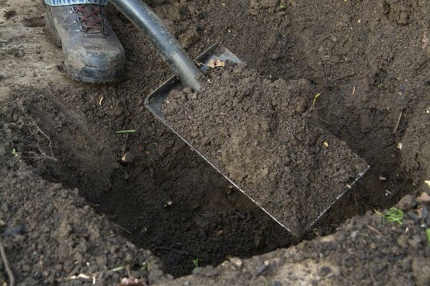 dig-a-planting-hole-5