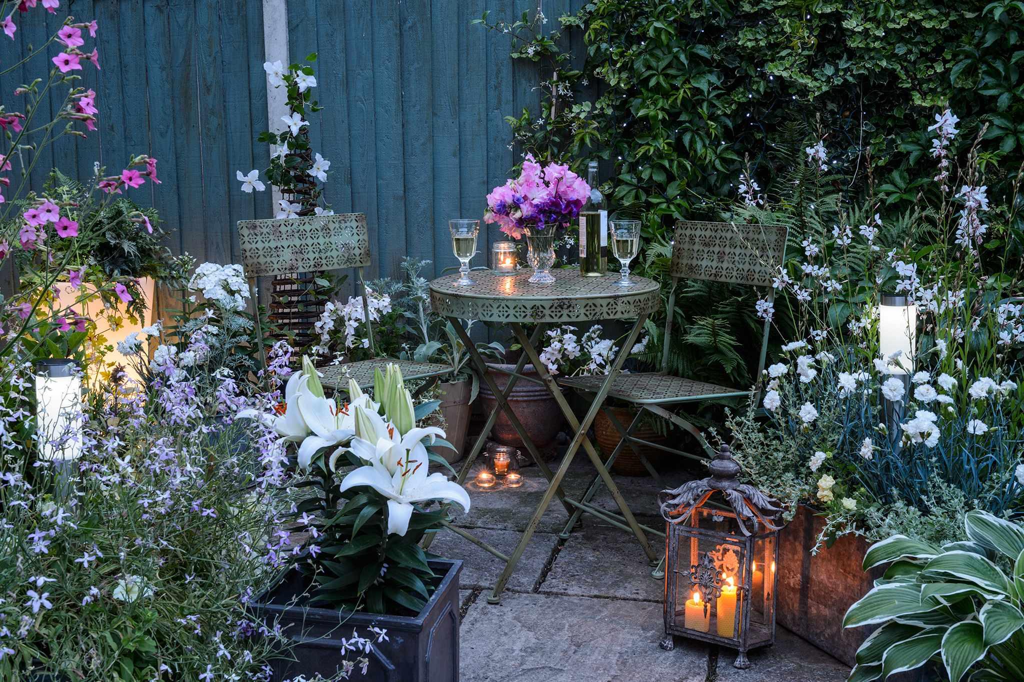 Tips for Creating a Night Garden