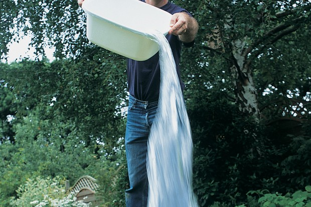 using-grey-water-on-the-garden-2