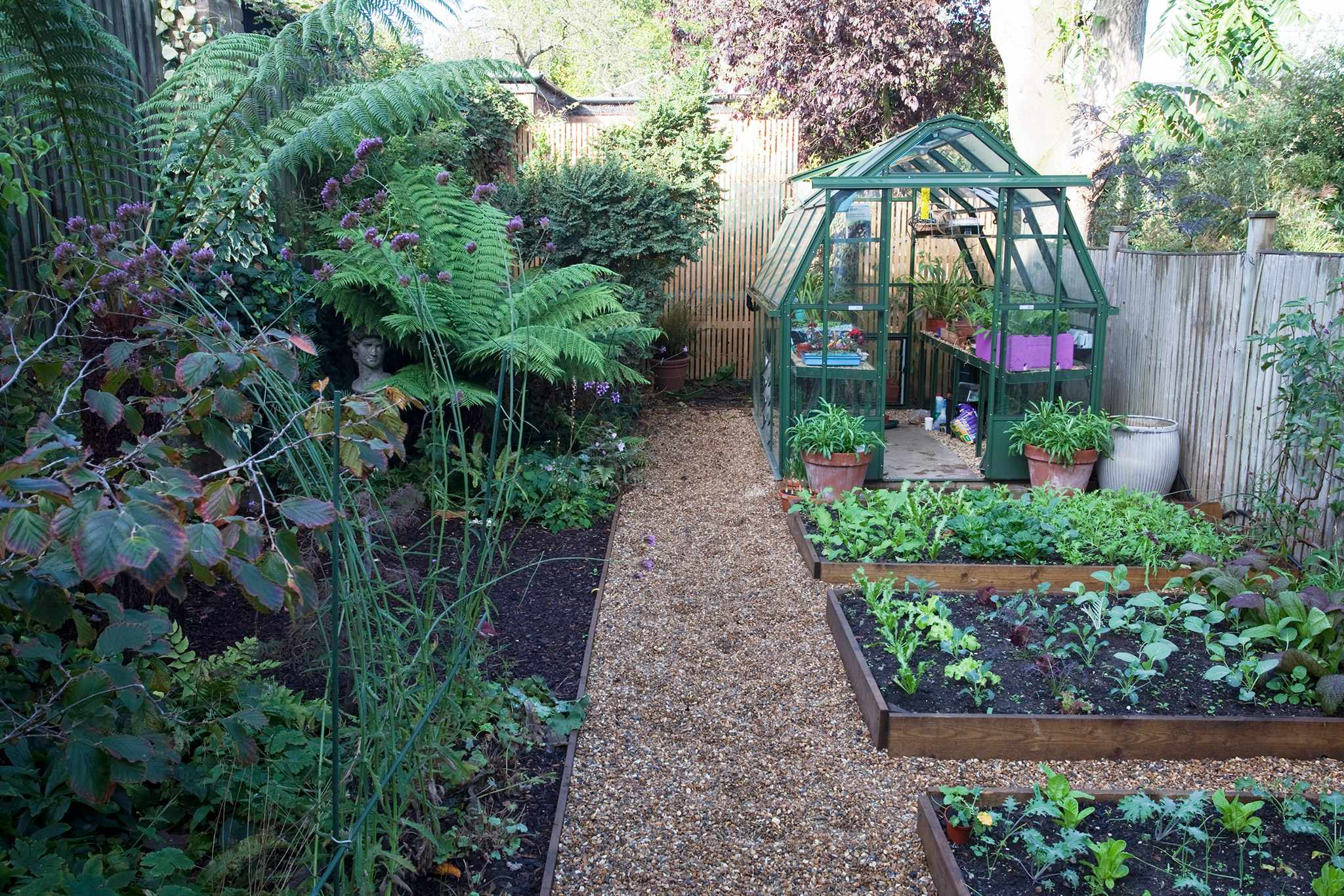 Greenhouse in small garden