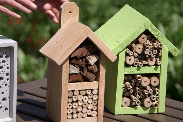 Types of bee hotel