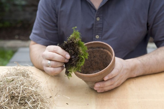 Adding moss to the pot