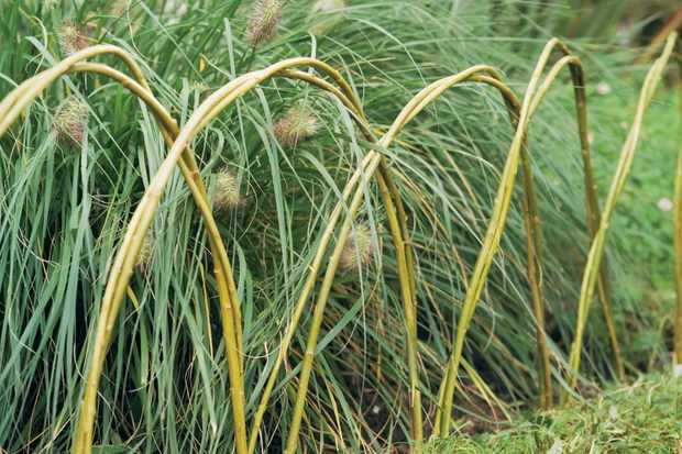How to make willow edging