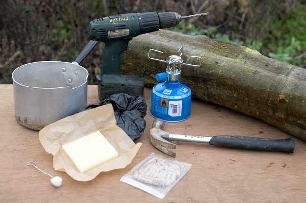 How to grow edible mushrooms
