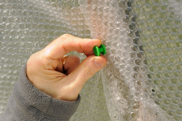 Pinning overlapping layers of bubble-wrap to the wooden frame of a greenhouse