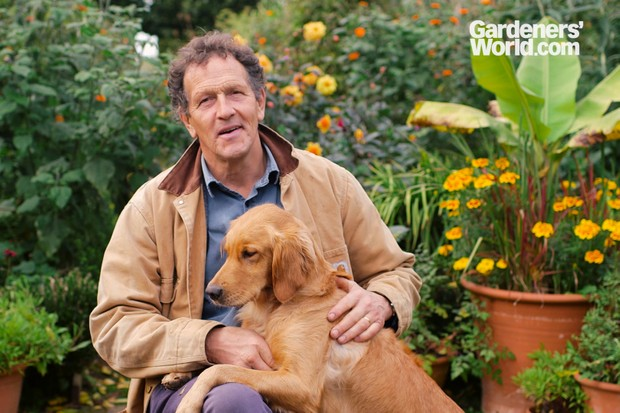 Monty Don and his dog in Longmeadow in autumn