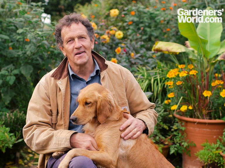 Tour Of Longmeadow With Monty Don Bbc Gardeners World Magazine