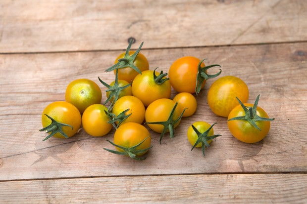 Orange-yellow cherry 'Sungold' tomatoes