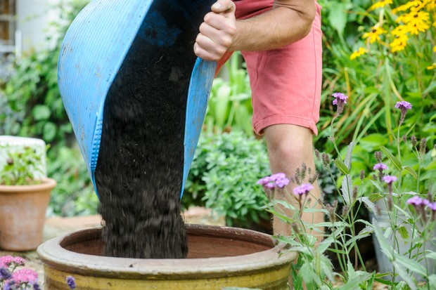 Pouring good-quality compost from a plastic trug into a planter